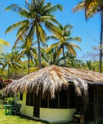 Living in Grenada: House Sitting and Our Need For a Home Base