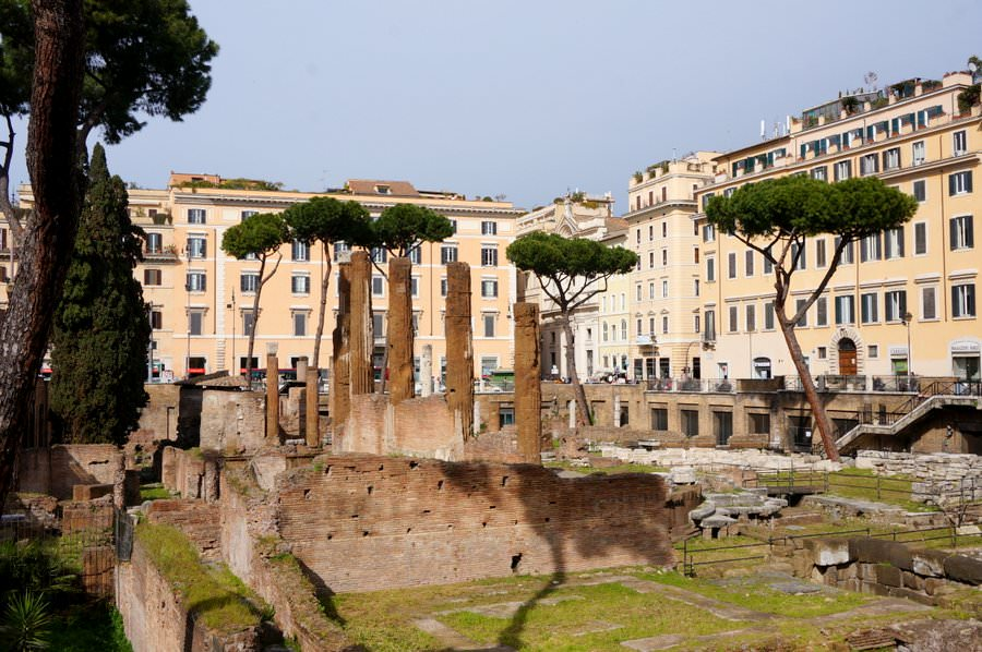 Largo di Torre Argentina travelling in rome