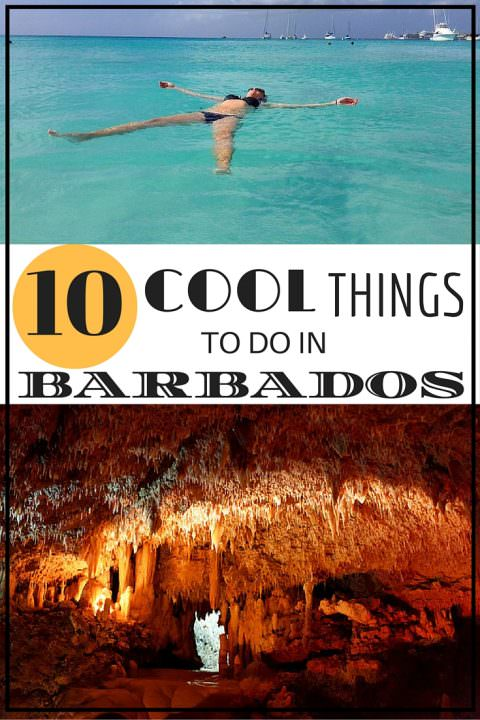 Cool Things To Do In Barbados Goats On The Road - 10 things to see and do in barbados