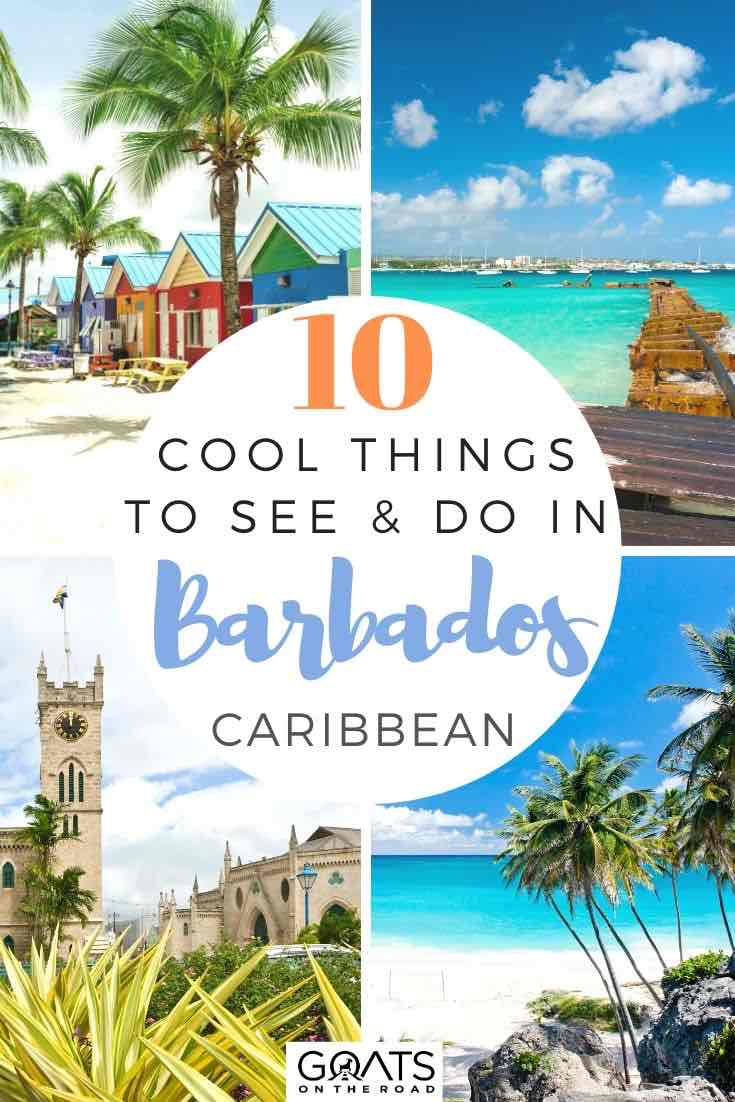 highlights of Barbados with text overlay 10 cool things to see and do