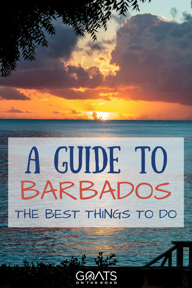 Guide To The Best Things To See In Vatican City: 10 Cool Things To Do In Barbados