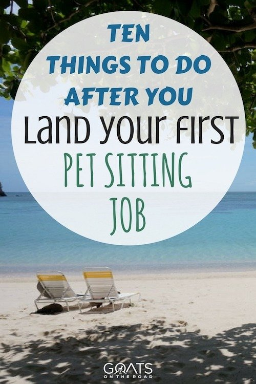 Beach setting with text overlay Ten Things To Do After You Land Your First Pet Sitting Job