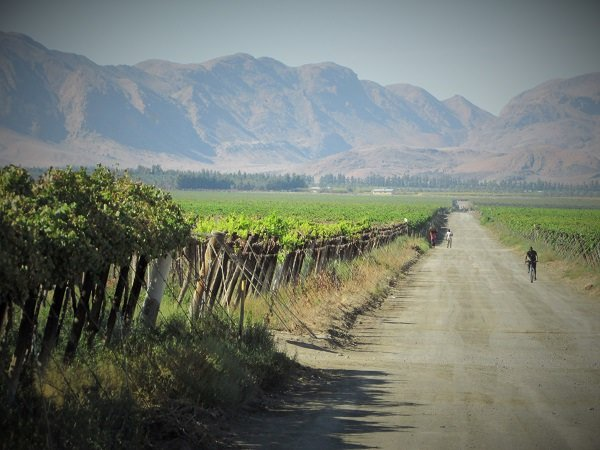where to stay in namibia near a vineyard