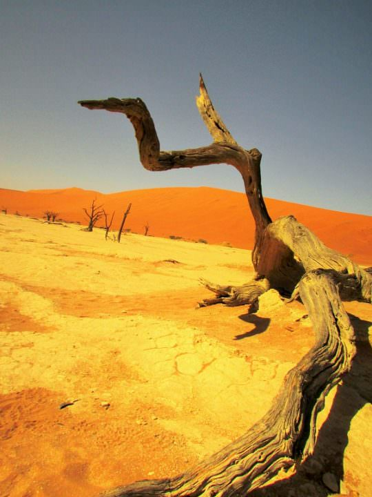 travle to namibia deadvlei