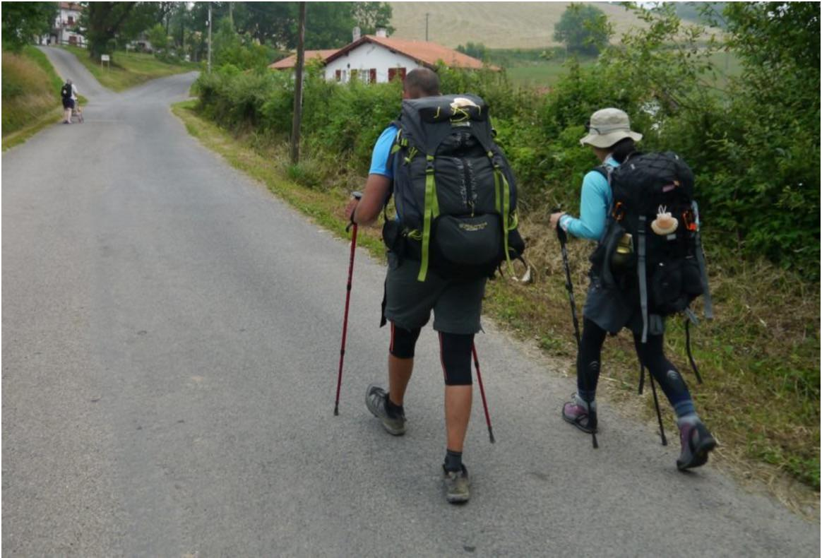 how to hike the french camino trail