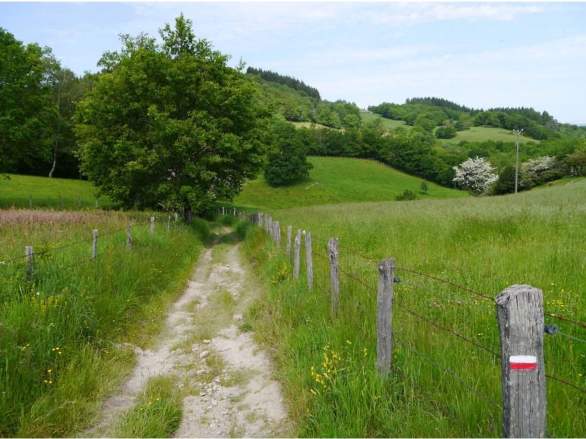 scenery along the french camino trail hike