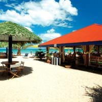 the best beach in grenada grand anse stay at mount cinnamon