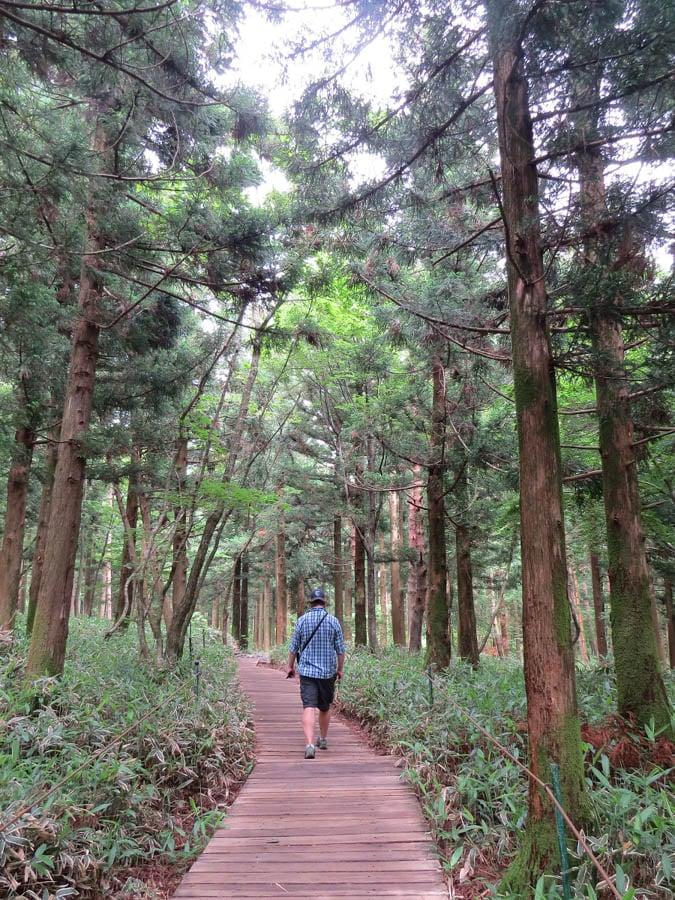hallasan hiking in south korea