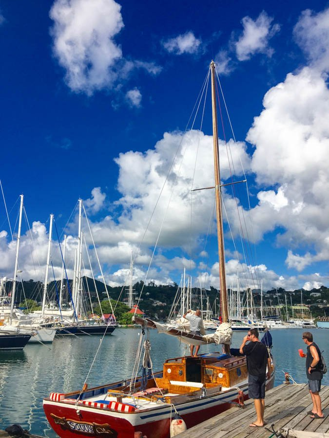 sailing the grenadines with the savvy