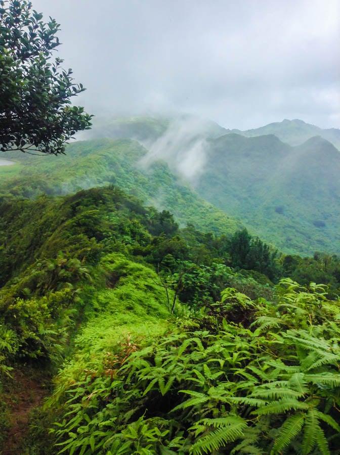 travel to grenada hiking mt qua qua