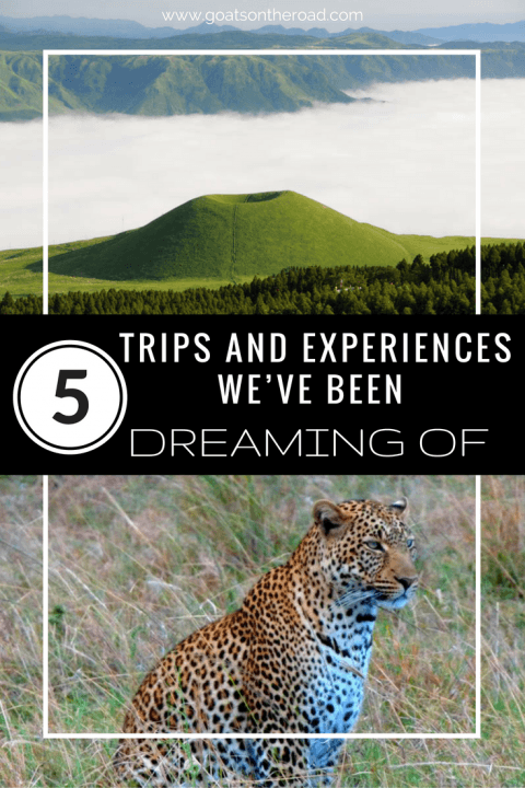 5-trips-and-experiences-weve-been-dreaming-of