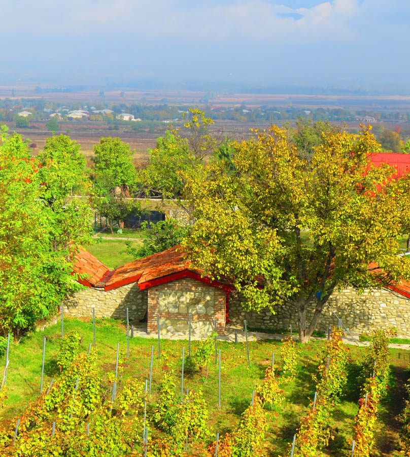 georgia winery travel to georgia