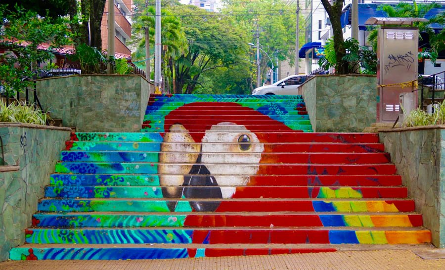 travel to medellin el poblado area paintings