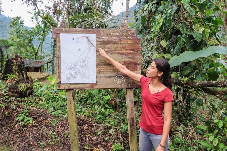 planning a trip to colombia trekking the ciudad perdida
