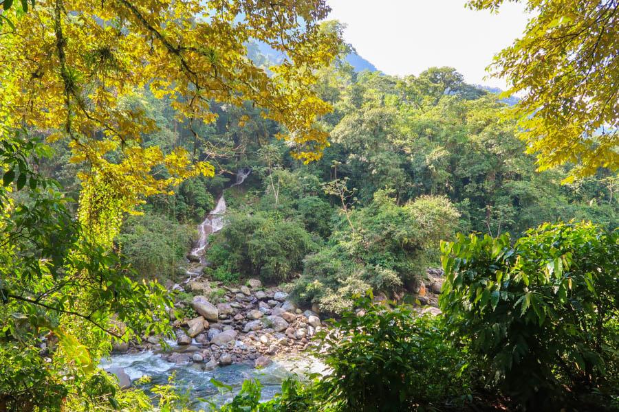 hiking the ciudad perdida river swim