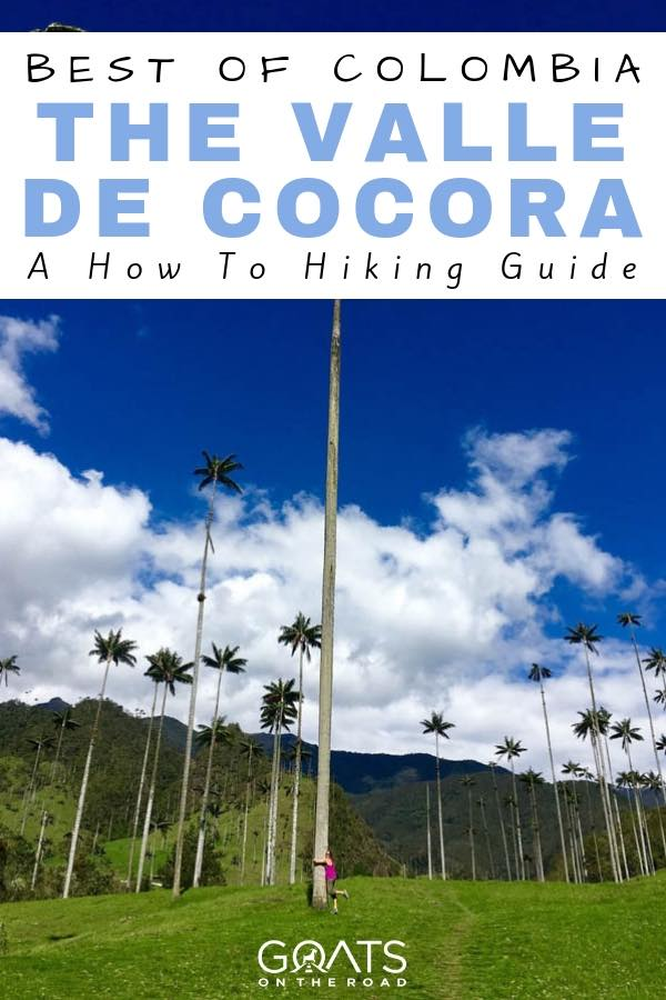 Cocora Valley Palm Trees with text overlay Best of Colombia The Valle De Cocora
