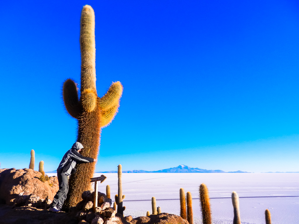 travel to At the Salar De Uyuni, Bolivia