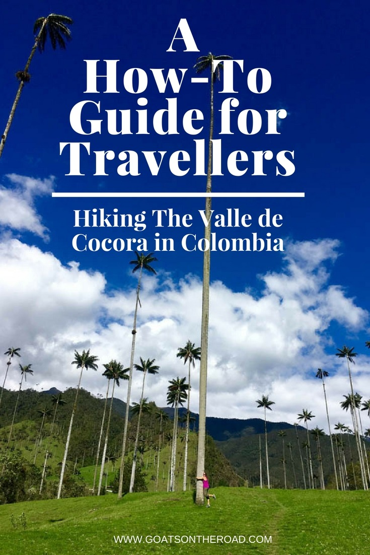 Hiking The Valle de Cocora in Colombia- A How-To Guide for Travellers