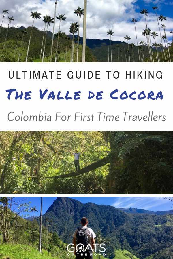 Colombia Rainforest with text overlay Ultimate Guide Hiking The Valle de Cocora in Colombia