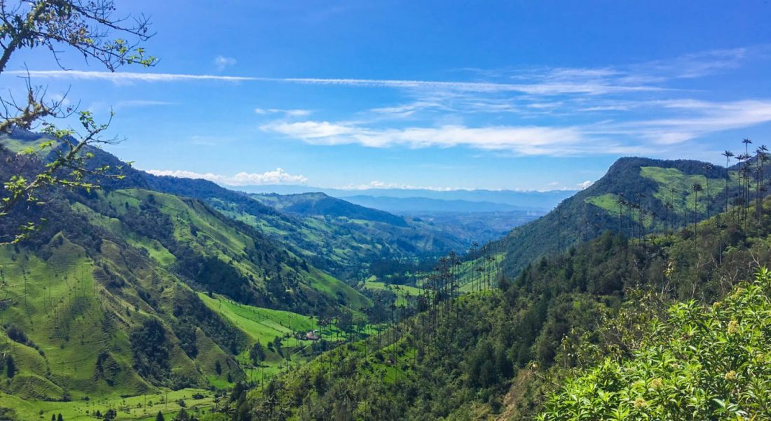 guide to hiking the valle de cocora in salento colombia