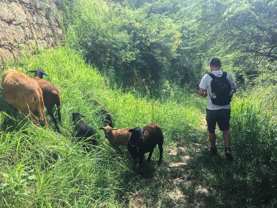 hiking barichara to guane