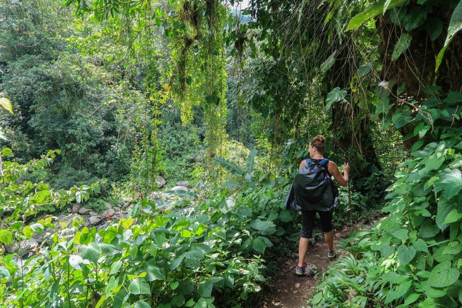 hiking the ciudad perdida guide to the lost city