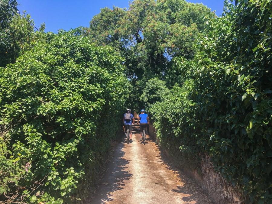 travel to kampos chios greece goat trails mountain biking