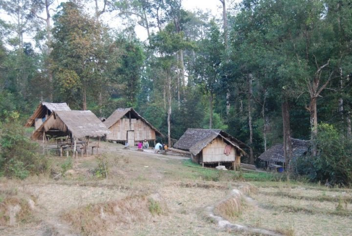 25 Things to Do in Thailand Jungle Trekking