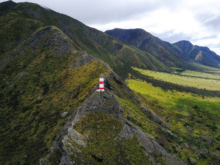 New Zealand Country Guide. Cape Palliser Lighthouse. Photo by beardandcurly.com.