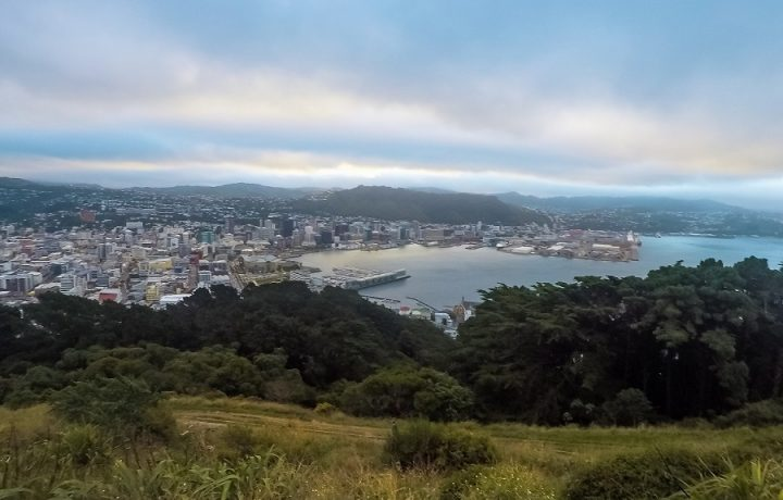 New Zealand Country Guide. Wellington < New Zealand. Photo by beardandcurly.com