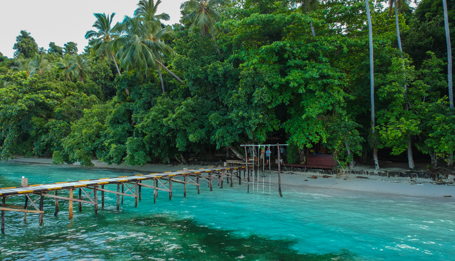 Diving in raja ampat the richest marine biodiversity on - Raja ampat explorers dive resort ...