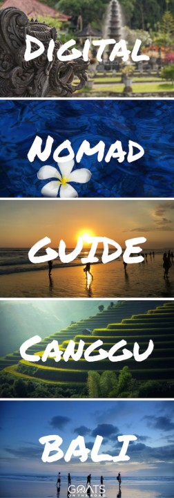 Digital Nomad Guide Canggu Bali