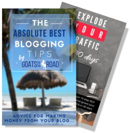 free ebook how to start a travel blog and free SEO training