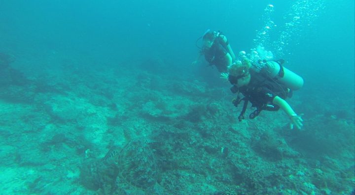 Things to Do in Lombok - Scuba Diving