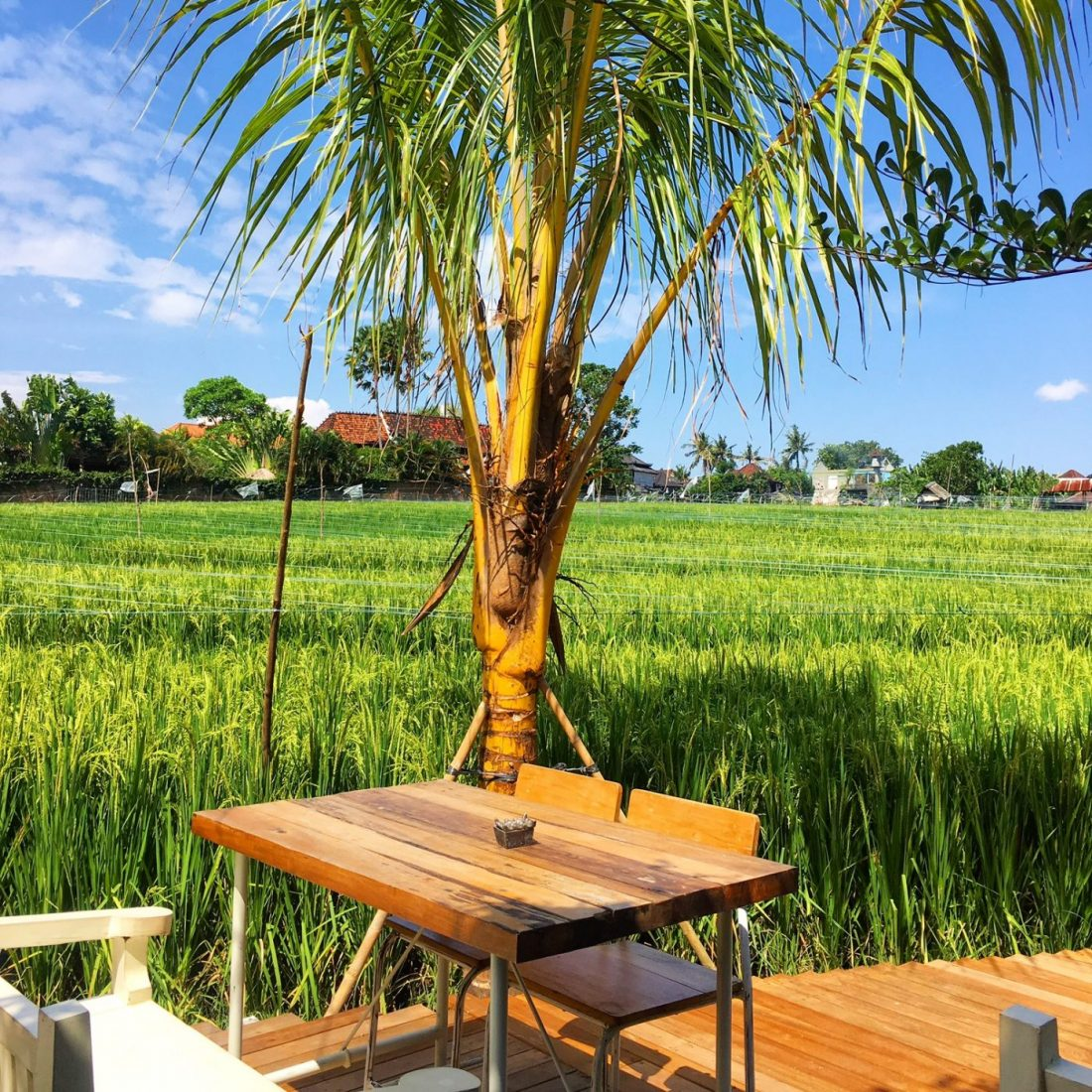 where to eat in canggu bali try milu by nook