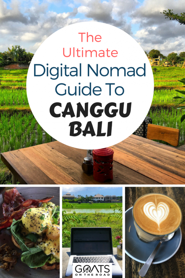 rice paddies, coffee and food with text overlay the ultimate digital nomad guide to canggu bali
