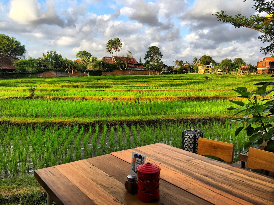 milu by nook lunch views in canggu bali