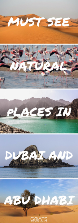 6 Must-See Natural Attractions in Dubai & Abu Dhabi-4