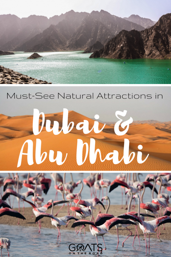 hatta lake and flamingoes with text overlay must see natural attractions in dubai and abu dhabi