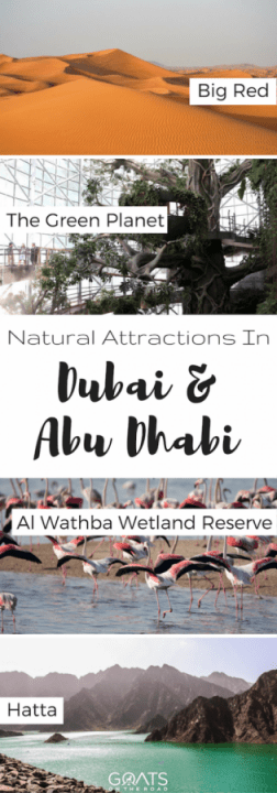 Natural Attractions In Dubai & Abu Dhabi