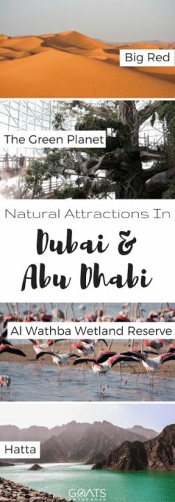 Natural Attractions In Dubai & Abu Dhabi