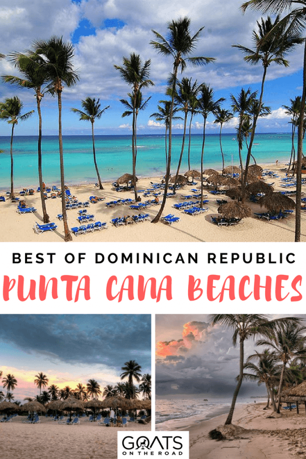 palm trees next to a beautiful beach with text overlay the 5 best beaches in punta cana