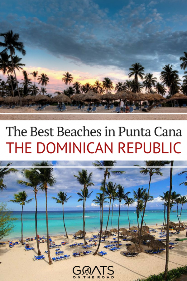 palm trees on the beach with text overlay the best beaches in punta cana