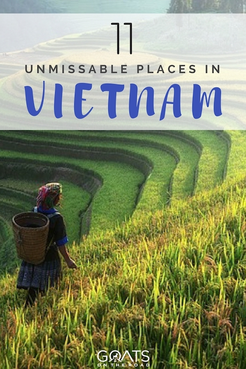 Sapa rice fields with text overlay 11 Unmissable Places In Vietnam