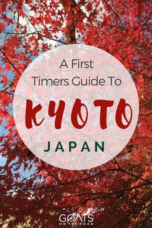 Autumn leaves in Japan with text overlay a first timers guide to Kyoto Japan