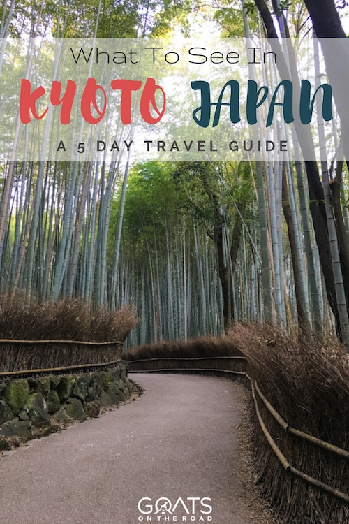 Bamboo Forest with text overlay What To See In Kyoto Japan A 5 Day Travel Guide