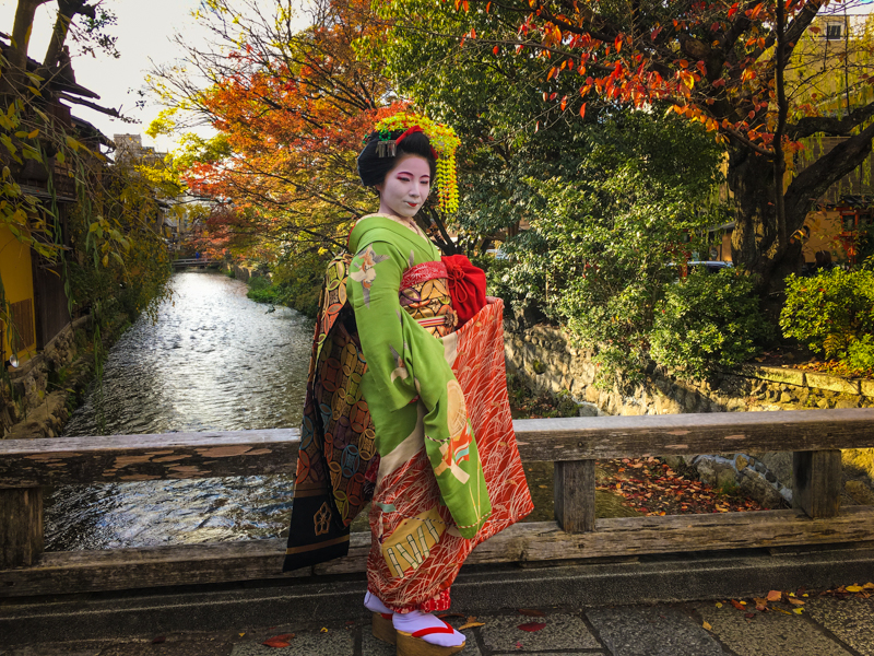 authentic maiko in kyoto japan
