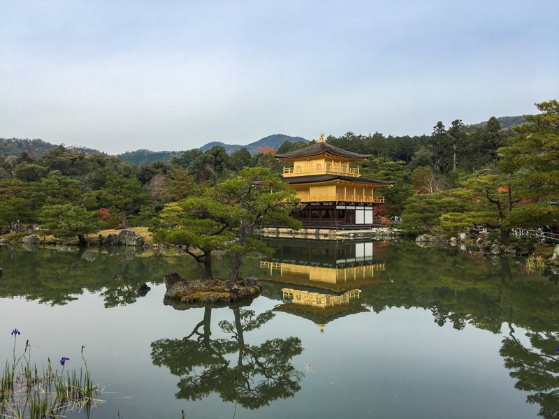 the golden pavillion in kyoto, an easy trip from tokyo