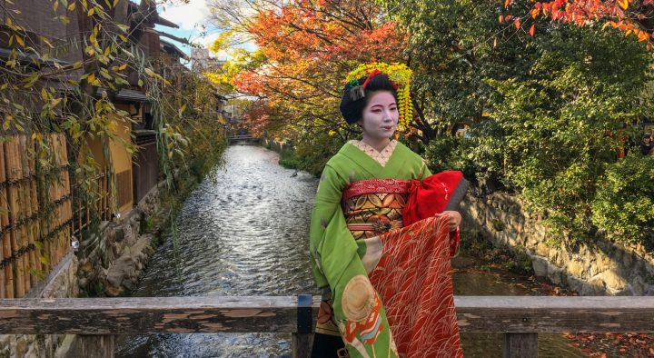 what to see in kyoto a travel guide