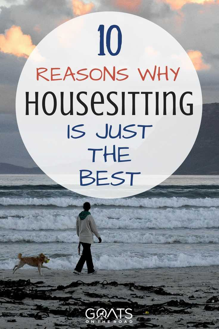 Woman walking dog on beach with text overlay 10 Reasons Why Housesitting Is Just The Best